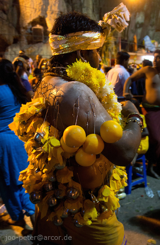 man in trance with fruits fixed with hooks in the skin of his back inside sanctuary  of Batu Caves, Thaipusam ceremonies,  Kuala Lumpur, Malaysia, 2012. Thaipusam ceremonies, celebrated by tamile Hindu community in Malaysia, take place  in Sanctuary of Batu Caves at the border of Kuala Lumpur, each year around end of January or beginning of February, according to Hindu moon calendar. The event is paying hommage to Lord Murugan, a spirit or god created by Shiva to lead the army of gods against the army of evil demons, finally defeating the evil spirits. There are many ways to present offerings or sacrifices for this major religious event. Devotees mortify their bodies by carrying heavy kavaris with spears fixed in their skin or fruits, flowers and little post with holy milk fixed with hooks in their skin, ascending the stairways to the sanctuary in trance, `followed by assistant  taking care and musicians playing loud and fast rhythmic trance music.  Many families shave their head in a ritual before ascending the stairways, as part of rituals to obtain salvation for their ancestors.