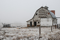 An old barn, surrounded by freezing fog, stands silent north of Denver, Colorado.