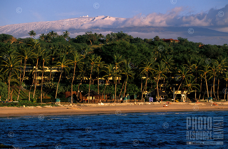 The blue water, palm trees and sandy beach at the Mauna Kea Resort with Mauna Kea Volcano and obsevartory in background