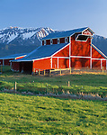 Wallowa County, OR   <br /> Evening light oh the red &quot;Welcome Stock Farm&quot; barn (1913) with Chief Joseph Mountain rising in the  distance