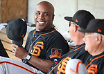 San Francisco Giants hitting coach Barry Bonds talks in the dugout before a spring training game against the Milwaukee Brewers in Phoenix, AZ, on Thursday, March 23, 2017.<br /> Photo by Cathleen Allison/Nevada Photo Source