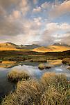 Hulahula River valley, Arctic National Wildlife Refuge, Alaska