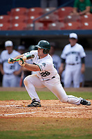 Dartmouth Big Green left fielder Ben Socher (26) lays down a bunt during a game against the Lehigh Mountain Hawks on March 20, 2016 at Chain of Lakes Stadium in Winter Haven, Florida.  Dartmouth defeated Lehigh 5-4.  (Mike Janes/Four Seam Images)