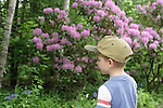 Boy with hat looking at natural scene with trees and flowers