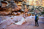January 2018:  A hiker enjoys a solitary winter's day in Capital Reef National Park, Utah.