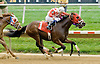 Vigilante Law winning at Delaware Park on 10/4/12