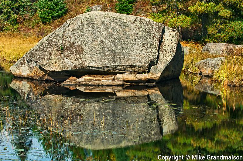 Boulder in Lake Opeongo wetland<br />Algonquin Provincial Park<br />Ontario<br />Canada
