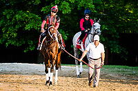 BALTIMORE, MD - MAY 18: Trainer Mark Casse walks Classic Empire to the track for training in preparation for the Preakness Stakes at Pimlico Race Course on May 18, 2017 in Baltimore, Maryland.(Photo by Douglas DeFelice/Eclipse Sportswire/Getty Images)