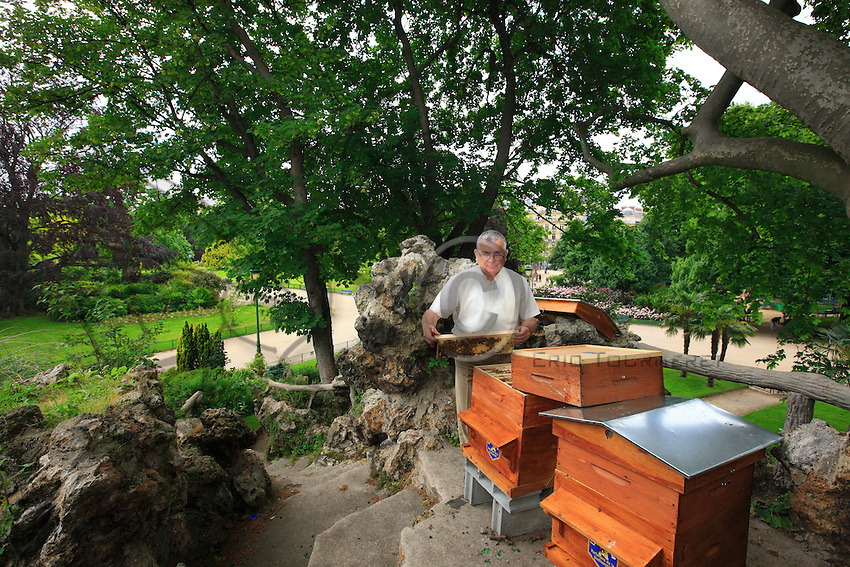 "Yves Védrenne of the SNA (National Apiculture Syndicate) at the apiary in the Parc Monceau. ""You must not say that everyone can have a hive in their garden. Beekeeping requires being educated in the subject, having the space sufficient for the bees. In the city, we prefer a gentle breed of bee like the Buckfast."""