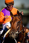 ARCADIA CA - JUNE 04: Beholder #2, with jockey Stevens aboard, easily wins the Vanity Mile at Santa Anita Park on June 4, 2016 in Arcadia, California. (Photo by Alex Evers/Eclipse Sportswire/Getty Images)