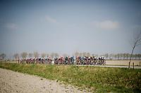 (2nd) peloton during De Moeren passage<br /> <br /> 81st Gent-Wevelgem 'in Flanders Fields' 2019<br /> One day race (1.UWT) from Deinze to Wevelgem (BEL/251km)<br /> <br /> ©kramon