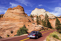 Checkerboard Mesa  in Zion National Park, Utah, USA
