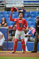 Palm Beach Cardinals catcher Chris Rivera (25) looks for a foul ball popup in front of umpire Jonathan Parra during a game against the Dunedin Blue Jays on April 15, 2016 at Florida Auto Exchange Stadium in Dunedin, Florida.  Dunedin defeated Palm Beach 8-7.  (Mike Janes/Four Seam Images)