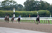 This image shows the mighty performance of Royal Delta destroying the Beldame field.