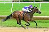 Miss Gracer winning at Delaware Park on 6/7/17