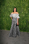 Renee Elise Goldsberry attends the Fifteenth Annual CFDA/Vogue Fashion Fund Awards at the Brooklyn Navy Yard building 28, at 63 Flushing Avenue, on November 5, 2018.
