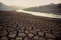 INDIA, state Gujarat, Narmada river and dams, reservoir of Narmada dam Sardar Sarovar Project at tribal village Manibeli, submerged farm land and forest, remained mud after submergence / INDIEN, Gujerat, Narmada Fluss und Staudaemme, Stausee des Sardar Sarovar Projekt, ueberflutetes Ackerland und zerstoerter Wald des Adivasi Dorf Manibeli