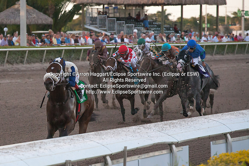 Falling Sky with jockey Luis Saez runs away from the field in the Gulfstream Park Sprint(G3) at Gulfstream Park, Hallandale Beach Florida. 02-08-2014
