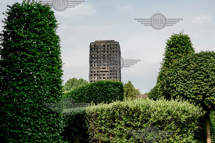 Manicured trees and hedges frame the charred remains of Grenfell Tower.