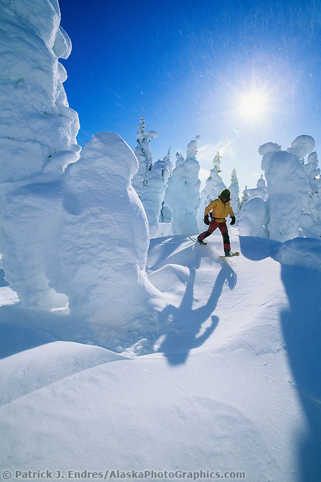 Man in a yellow jacket snow shoes around snow covered spruce trees in Alaska's interior.