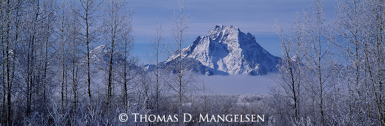 Mount Moran looms above the valley fog during a cold February morning in Grand Teton National Park, Wyoming.
