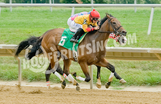 Leonides winning at Delaware Park on 8/1/12