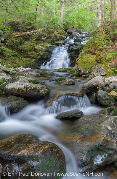Gordon Fall on Snyder Brook in Randolph, New Hampshire during the summer months. This waterfall is located along the Fallsway Trail and is part of the Snyder Brook Scenic Area.
