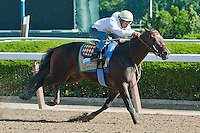 Paynter breezed seven furlongs in 1:25.00, in preparation for the 2012 GI Belmont Stakes at Belmont Park in Elmont, NY.
