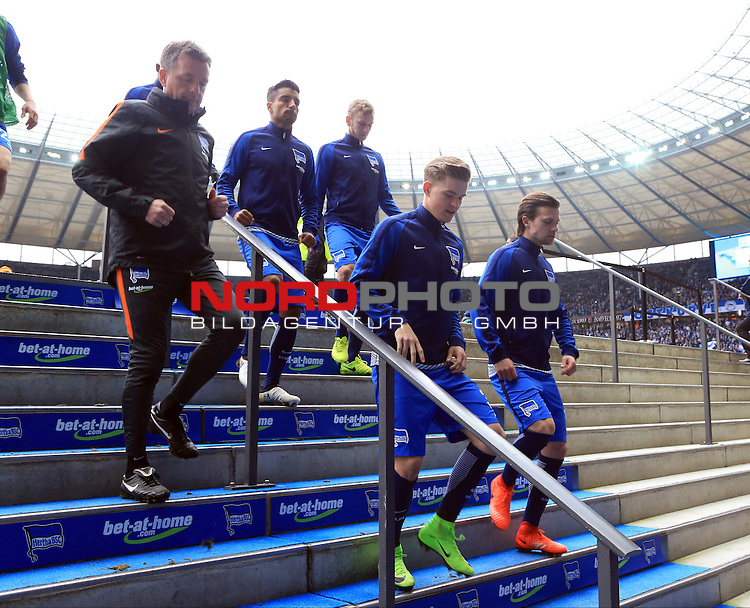 18.02.2017, OLympiastadion, Berlin, GER, 1.FBL, Hertha BSC VS. BAYERN MUENCHEN, im Bild <br /> Maximilian Mittelstaedt (Hertha BSC Berlin #34), Valentin Stocker (Hertha BSC Berlin #14), Sami Allagui (Hertha BSC Berlin #11), Fabian Lustenberger (Hertha BSC Berlin #28), Co-Trainer Rainer Widmayer (Hertha BSC Berlin)<br /> <br /> <br />       <br /> Foto &copy; nordphoto / Engler