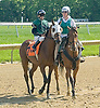 Not Abroad winning The Joseph French Memorial Stakes at Delaware Park on 5/19/12