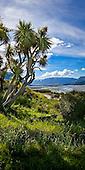 Ashburton District, Canterbury, South Island, New Zealand.