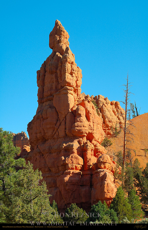 Pink Ledges Tower Hoodoo from Golden Wall Trailhead, Red Canyon, Dixie National Forest, Utah