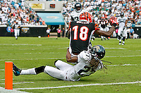 October 09, 2011:  Jacksonville Jaguars cornerback Rashean Mathis (27) attempts to tackle Cincinnati Bengals wide receiver A.J. Green (18) before Green fell into the endzone for a touchdown during first half action between the Jacksonville Jaguars and the Cincinnati Bengals played at EverBank Field in Jacksonville, Florida.  ........