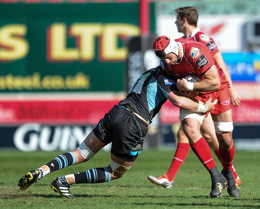 Scarlets' George Earle is tackled by Glasgow Warriors' Ryan Wilson<br /> <br /> Photographer Craig Thomas/CameraSport<br /> <br /> Rugby Union - Guinness PRO12 Round 20 - Scarlets v Glasgow Warriors - Saturday 16th April 2016 - Parc y Scarlets - Llanelli <br /> <br /> &copy; CameraSport - 43 Linden Ave. Countesthorpe. Leicester. England. LE8 5PG - Tel: +44 (0) 116 277 4147 - admin@camerasport.com - www.camerasport.com
