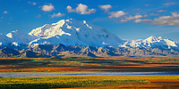 North Face Of 20, 3020+ Ft. Mt. Denali and Mt. Foraker, autumn tundra and Mckinley River Bar, Denali National Park, Alaska.
