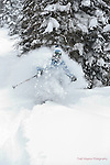 Powder @ Wolf Creek