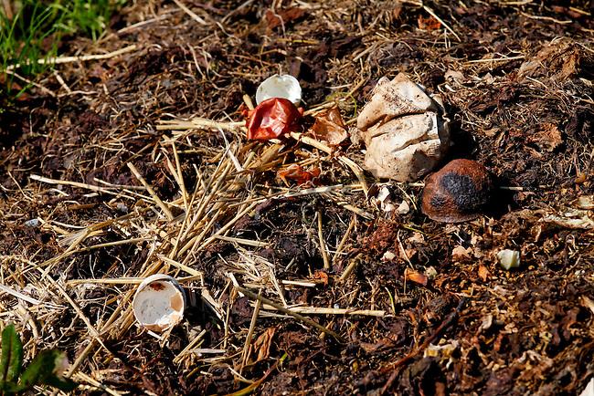 Kompost, Compost, Alp Pradamee, Malbun, Liechtenstein.