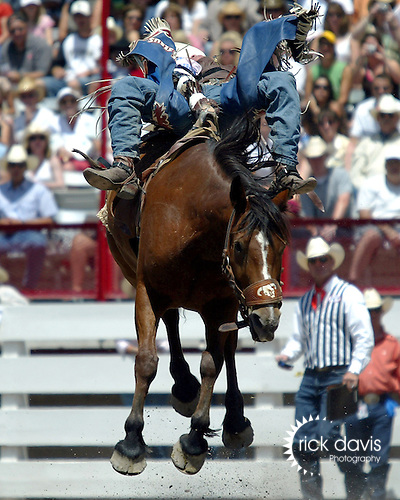 PRCA cowboy Heath Ford spurs on the Bad Company Rodeo Company bronc Free Bird during opening round action of the 112th Annual Cheyenne Frontier Days Rodeo on July 19, 2008. Heath was awarded a score of 80 points for his bareback bronc ride.