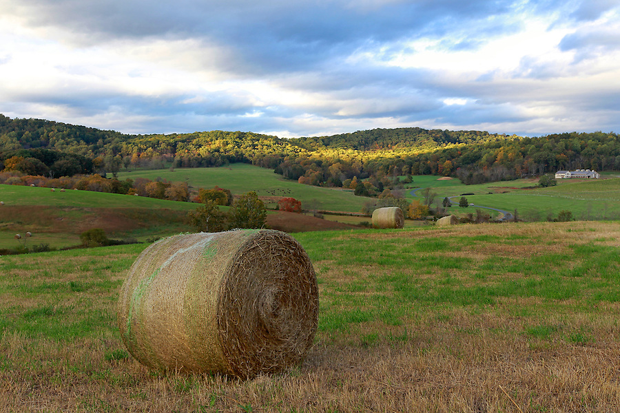 Bundoran Farm in Albemarle County, VA. Photo/Andrew Shurtleff