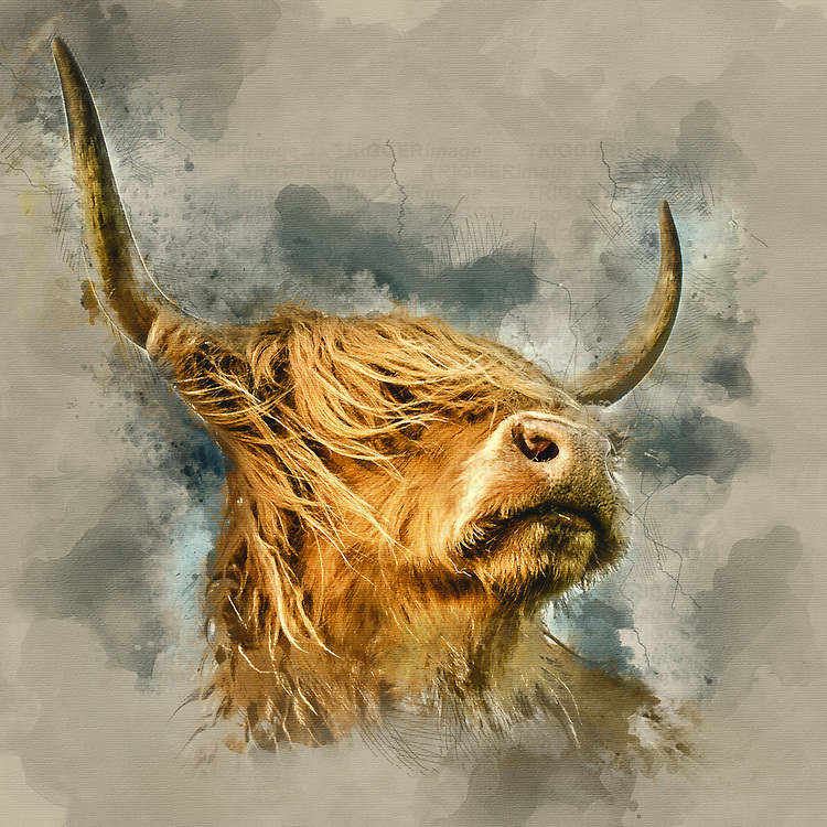 Illustration of farm cattle