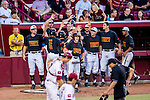 Maryland celebrates a run in the fourth inning of the game between the South Carolina Gamecocks and the Maryland Terrapins.