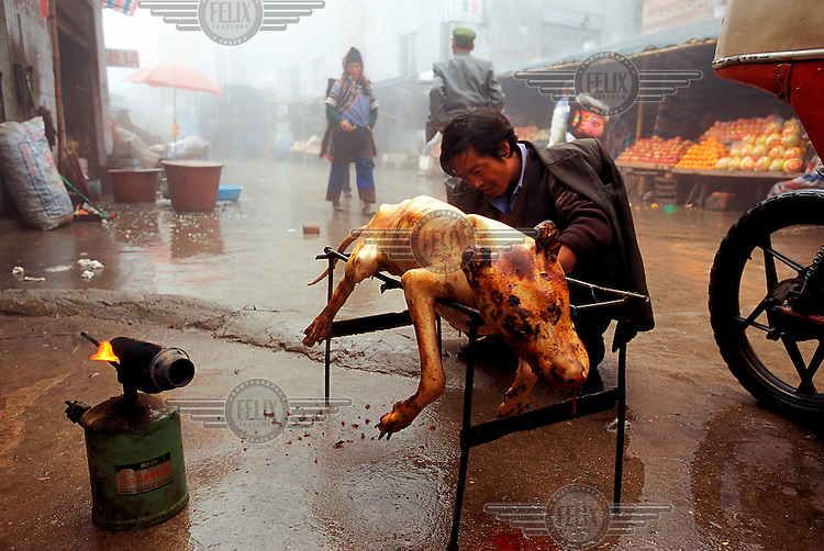Restaurant owner cleans dirt out from between the toes of a recently slaughtered dog as the blowtorch with which he is going to roast the animal stands by.  Dog meat is considered a delicacy in many parts of China, particularly in the south and during the winter.