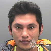 "Pictured: Quang Lam<br /> Re: The ringleaders of a Vietnamese crime gang have been jailed after police seized 2.5 tonnes of cannabis worth about £6m in raids across south Wales.<br /> A total of 21 people have been sentenced in a case going back to 2017 after dozens of cannabis factories were uncovered across the region and beyond.<br /> One of the defendants initially claimed to be 14 years old, but police proved he was actually aged 26.<br /> The gang leaders were sentenced at Merthyr Tydfil Crown Court on Friday.<br /> Bang Xuan Luong, 44, was sentenced to eight years in prison. His partner, 42-year-old Vu Thi Thu Thuy, was jailed for six years and Tuan Anh Pham, 20, who was described in court as the ""IT Man"", received five years.<br /> An investigation into a cannabis factory in the Cynon Valley led officers from South Wales Police's Force Intelligence and Organised Crime Unit (FIOCU) to a string of others across south Wales, Gwent and Dyfed-Powys force areas."