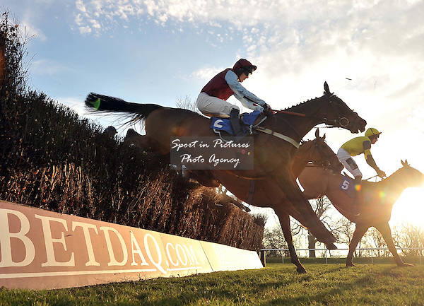 Winner The Polomoche (Mr Sam Painting) jumps. Race 6. pointtopoint.co.uk Hunters¥ Chase. Sidney Banks Day. Huntingdon Race Course. Cambridgeshire. 23/02/2012. MANDATORY Credit Garry Bowden/Sportinpictures - NO UNAUTHORISED USE - 07837 394578