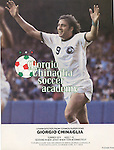 Flyer for Georgia Chinaglia Soccer Academy