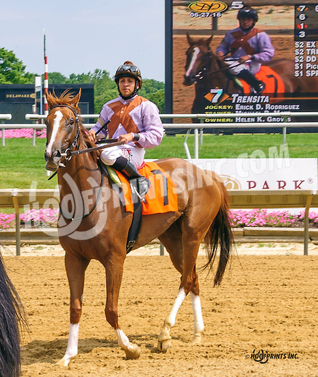Trensita winning at Delaware Park on 6/27/16