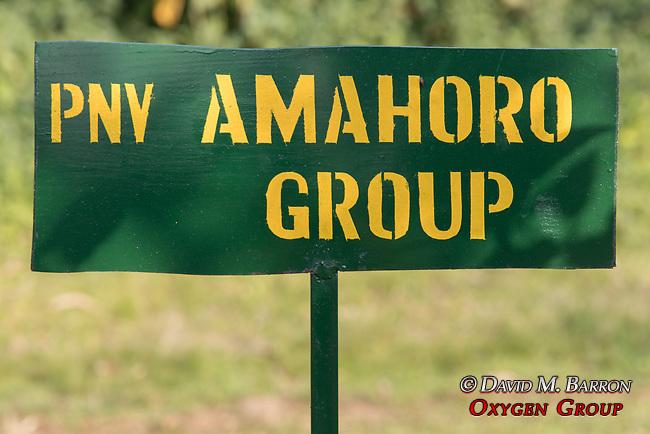 Amahoro Group Sign