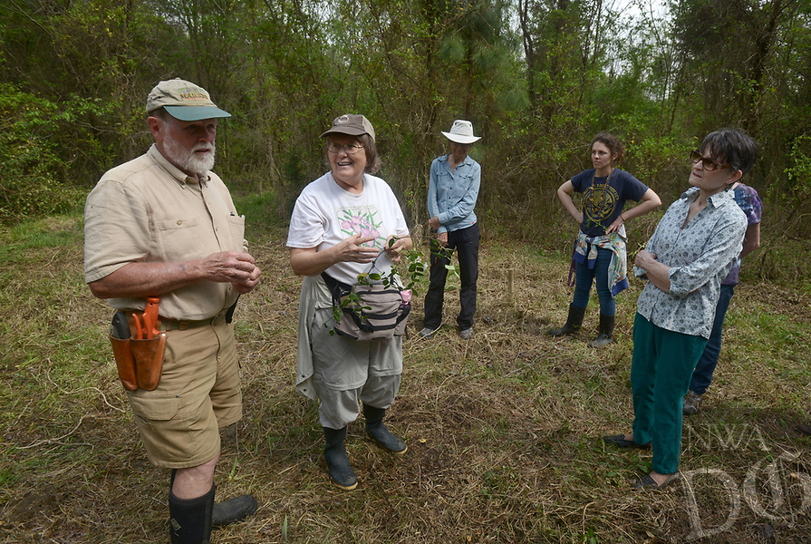 NWA Democrat-Gazette/BEN GOFF @NWABENGOFF<br /> Burnetta Hinterthuer (second from left) of Fayetteville, a professor at Northwest Arkansas Community College and member of the Arkansas Native Plant Society, leads a plant discovery walk Sunday, April 16, 2017 during the 13th annual Earth Day celebration at World Peace Wetland Prairie in Fayetteville. The event hosted by the Omni Center for Peace, Justice and Ecology included guided nature hikes in the park, live music, and other nature activities for all ages.
