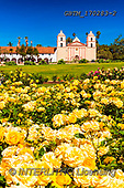 Tom Mackie, LANDSCAPES, LANDSCHAFTEN, PAISAJES, photos,+America, California, North America, Santa Barbara, Tom Mackie, USA, bloom, blooming, blue, mission, portrait, rose, roses, up+right, vertical, yellow,America, California, North America, Santa Barbara, Tom Mackie, USA, bloom, blooming, blue, mission, p+ortrait, rose, roses, upright, vertical, yellow++,GBTM170283-2,#L#, EVERYDAY