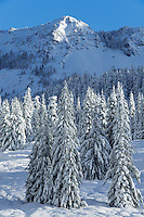 North Cascade Mountains in Winter